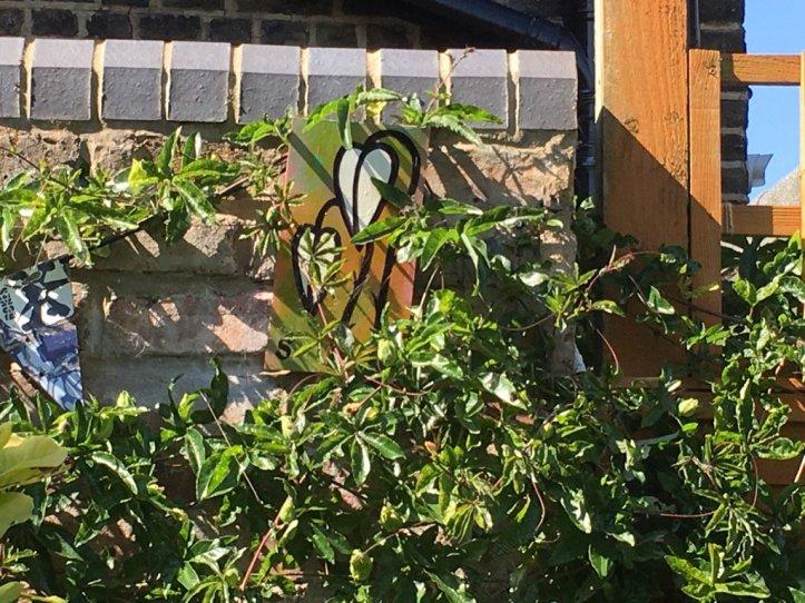 Polly's garden...