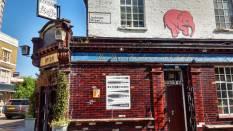 #365ArtDrop18 – 62/365, a leaf left hanging in Hackney, East London. May 2018